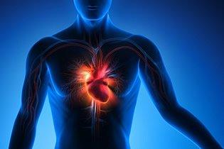 Tachykardie - Im Volkrmund Herzrasen genannt